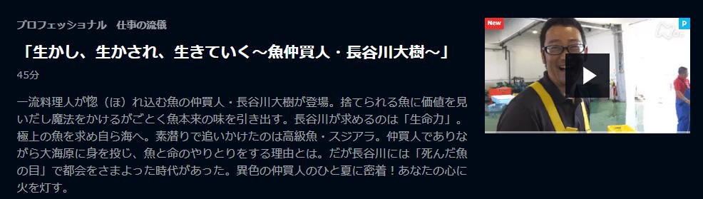 U-NEXT「プロフェッショナル仕事の流儀・長谷川大樹」キャプチャ,画像