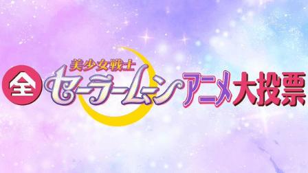 全セーラームーンアニメ大投票,画像