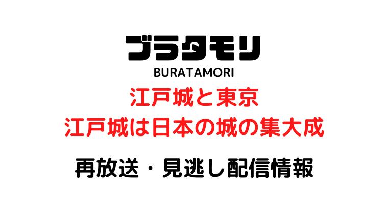 ブラタモリ江戸城テキスト,画像