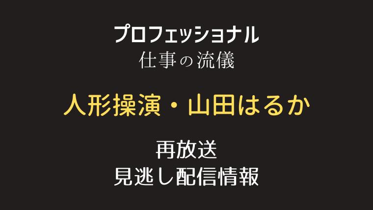プロフェッショナル仕事の流儀「人形操演・山田はるか」テキスト,画像