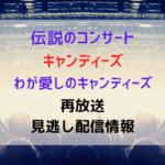 """伝説のコンサート キャンディーズ"""" わが愛しのキャンディーズ""""リマスター版テキスト,画像"""