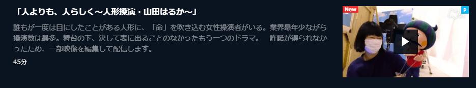 U-NEXTプロフェッショナル仕事の流儀「人形操演・山田はるか」キャプチャ,画像